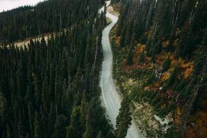 Vista aérea de la carretera vacía a través del bosque durante el día.