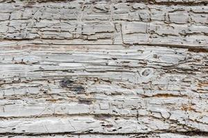 Rustic white wooden texture