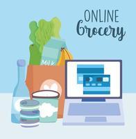 Online market via computer with credit card vector