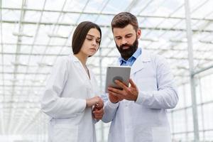 hombre y mujer trabajan con tableta de pie en el invernadero