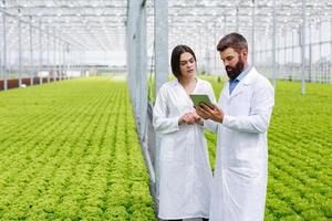 Two scientists collecting data in a green house