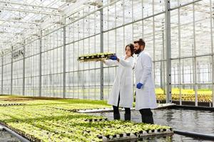 Man and woman in laboratory robes work with plants in a greenhouse