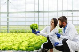 Woman and man in laboratory robes examine plants