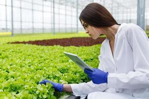 Female scientist examining plants