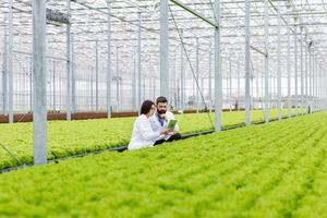Male and female scientist in a green house