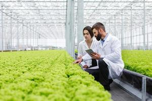 Two scientists monitoring green house