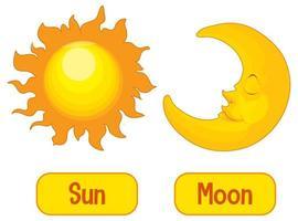 palabras opuestas con sol y luna vector