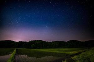 Starry night above rice fields