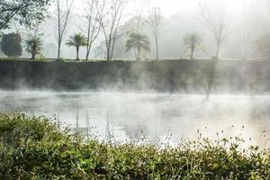 estanque con niebla