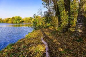 paisaje otoñal con lago y árboles