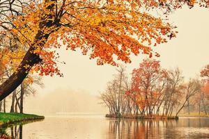 lago de otoño en el parque