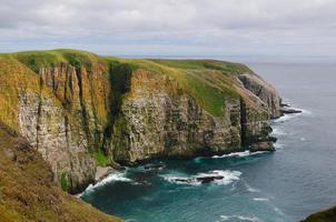 Bird Cliffs in Newfoundland photo