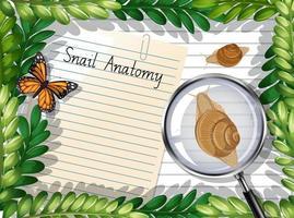 Vista superior de papel en blanco con hojas y elementos de mariposas y caracoles vector