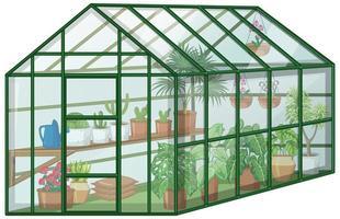 Muchas plantas en invernadero con pared de vidrio sobre fondo blanco.