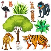 Set of cute wild animal and nature vector