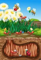 Scene with plants and insects in the garden vector