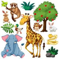Set of cute wild animal and nature