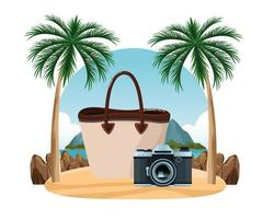 Summer, beach and tropical vacation composition