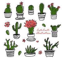 cactus y suculentas dibujadas a mano