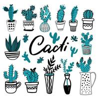 Collection of cactuses vector