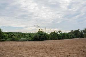 Cultivated land in the countryside