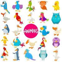 Cartoon birds animal characters large set