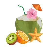 frutas tropicales exóticas vector