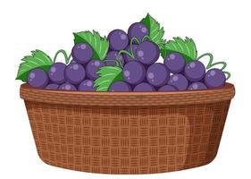 Uvas en la canasta aislado sobre fondo blanco.