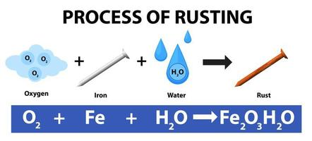 Process of rusting chemical equation vector