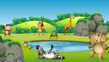 animales alrededor de la escena del estanque vector