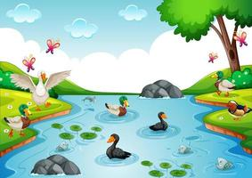 grupo de aves de corral en el río en la escena de la naturaleza vector