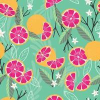 fruta de patrones sin fisuras, pomelo con ramas vector