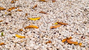 White pebbles texture background