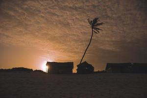 Silhouette of huts and palm tree at sunset