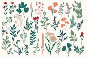 paquete de diseño botánico colorido dibujado a mano vector