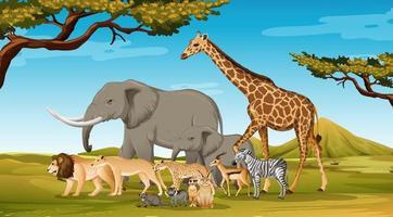 Grupo de animales salvajes africanos en la escena del bosque