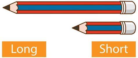 Palabras adjetivas opuestas con lápiz largo y lápiz corto sobre fondo blanco.