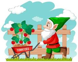 Gardening gnome with wheelbarrow vector