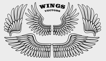 A set of different black and white wings vector