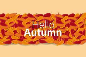 Hello Autumn Sale Background