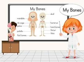 Young scientist standing in front of a board in laboratory vector