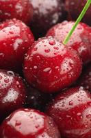 Wet cherries close-up photo