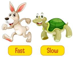 Opposite adjectives words with fast and slow vector