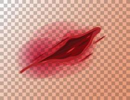 laceraciones de la piel herida sobre fondo transparente vector