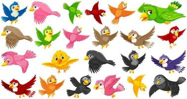 Set of bird cartoon character vector