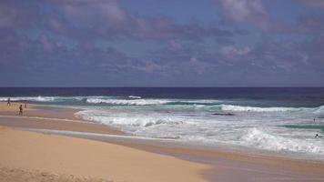 Coup de zoom moyen des vagues s'écrasant sur la plage à hawaii 4k video