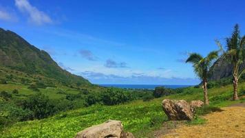 vista de um vale no havaí 4k video