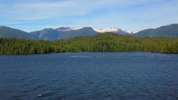 água corrente em um fiorde do Alasca hd video