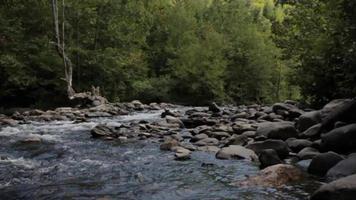 el agua fluye alrededor de la roca en un arroyo