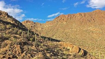 4k pan das montanhas do deserto no arizona com cactos video
